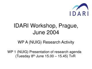 IDARI Workshop, Prague, June 2004