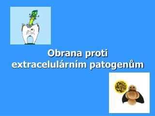 Obrana proti extracelulárním patogenům