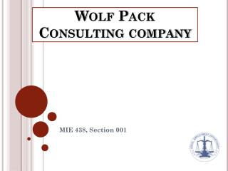 Wolf Pack Consulting company