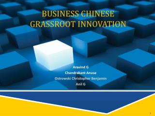 BUSINESS CHINESE GRASSROOT INNOVATION