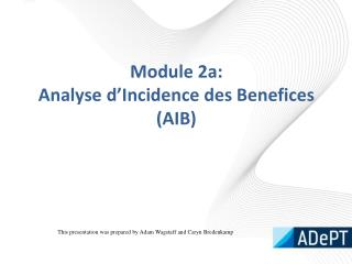 Module 2a: Analyse d'Incidence  des Benefices (AIB)