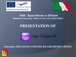 EWE - Equal Woman is Efficient  Multilateral Partnership - PROG. N° 2013-1-ES1-LEO04-72258 5
