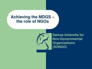 Achieving the MDGS – the role of NGOs