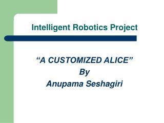Intelligent Robotics Project