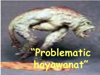 """Problematic hayawanat"""