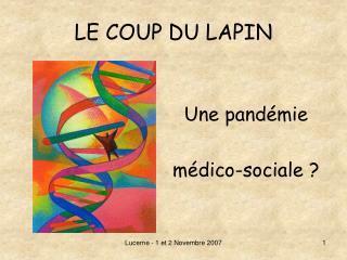 LE COUP DU LAPIN