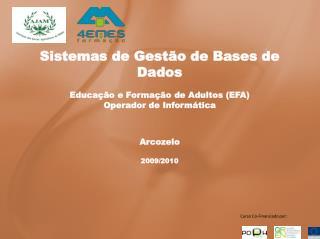 Sistemas de Gestão de Bases de Dados Educação e Formação de Adultos (EFA) Operador de Informática
