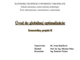 Úvod do globálnej optimalizácie Semestrálny projekt II