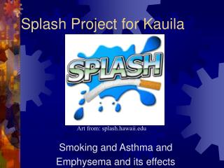 Splash Project for Kauila