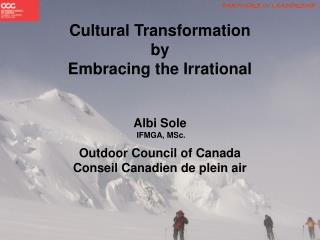 Cultural Transformation by Embracing the Irrational