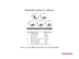 K Alby  et al. Nature 460 ,  890 - 893  (2009) doi:10.1038/nature08 252