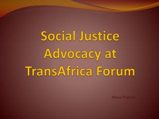 Social Justice Advocacy at TransAfrica Forum