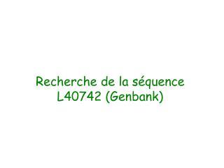 Recherche de la séquence L40742 (Genbank)