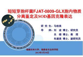 短短芽胞杆菌 FJAT-0809-GLX 胞内物质分离鉴定及SOD基因克隆表达