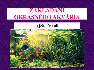 ZAKL�D�N� OKRASN�HO AKV�RIA