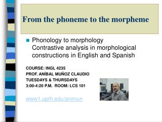 From the phoneme to the morpheme