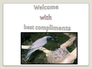 Welcome  with best compliments