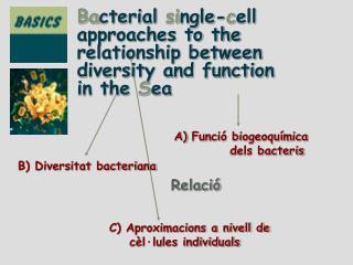 C) Aproximacions a nivell de     cèl·lules individuals
