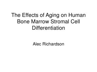 The Effects of Aging on Human Bone Marrow Stromal Cell Differentiation