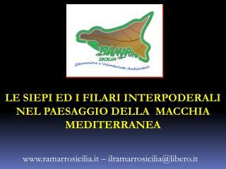LE SIEPI ED I FILARI INTERPODERALI NEL PAESAGGIO DELLA  MACCHIA MEDITERRANEA