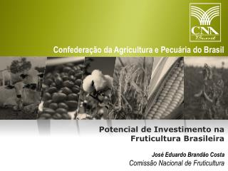 Jos� Eduardo Brand�o Costa Comiss�o Nacional de Fruticultura