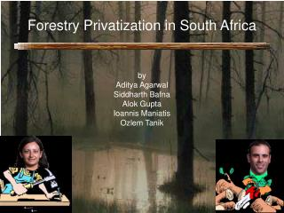 Forestry Privatization in South Africa