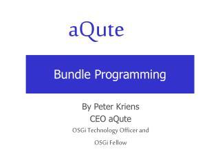 Bundle Programming