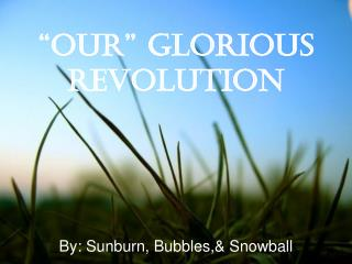 """""""Our"""" Glorious Revolution"""