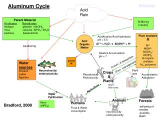 Soil/ Organic Matter