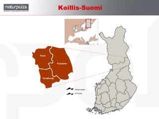 Koillis-Suomi