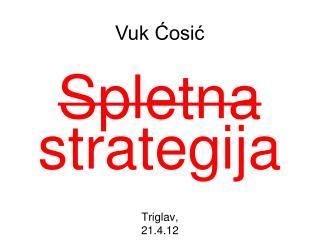 Spletna strategija