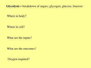 Glycolysis  breakdown of sugars; glycogen, glucose, fructose