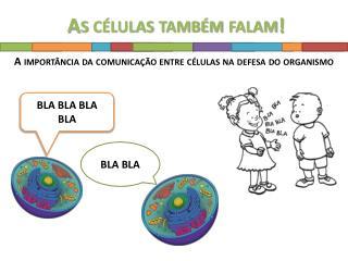 BLA  BLA BLA BLA
