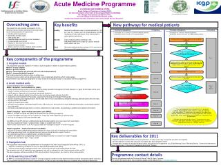 Acute Medicine Programme A  clinician-led initiative of the