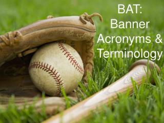 BAT: Banner  Acronyms &           Terminology