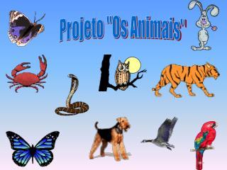 """Projeto """"Os Animais"""""""
