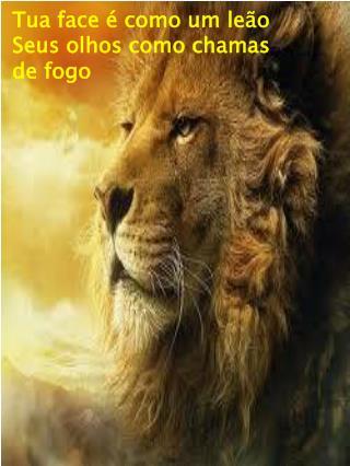 Tua face é como um leão Seus olhos como chamas de fogo