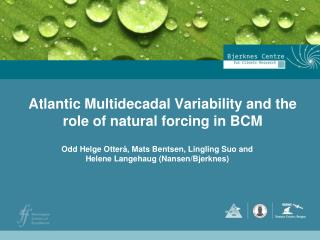 Atlantic Multidecadal Variability and the role of natural forcing in BCM