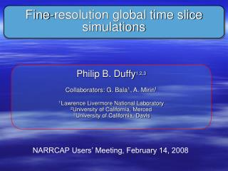 Fine-resolution global time slice simulations