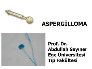 ASPERGİLLOMA