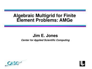Jim E. Jones Center for Applied Scientific Computing