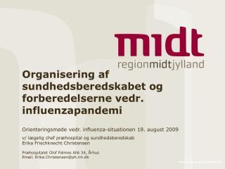 Organisering af sundhedsberedskabet og forberedelserne vedr. influenzapandemi