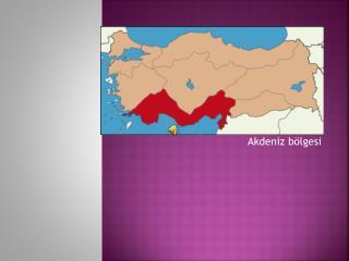 Akdeniz bölgesi