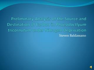 Steven Baldassano