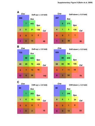 Supplementary Figure 9 (Bahn et al, 2009)