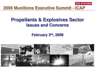 Propellants & Explosives Sector Issues and Concerns February 3 rd , 2009