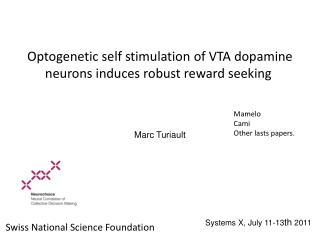 Optogenetic self stimulation of VTA dopamine neurons  induces  robust  reward seeking