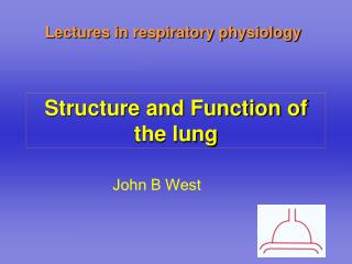 Structure and Function of the lung