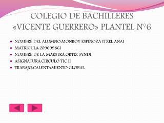 COLEGIO DE BACHILLERES «VICENTE GUERRERO» PLANTEL N°6