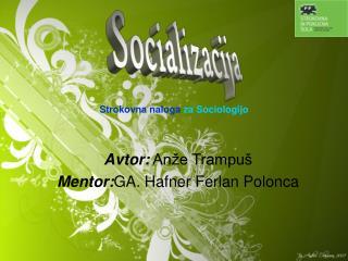 Strokovna naloga  za Sociologijo